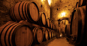 Guided visits to historical wine cellars