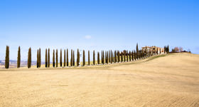 Beautiful tuscan panoramas